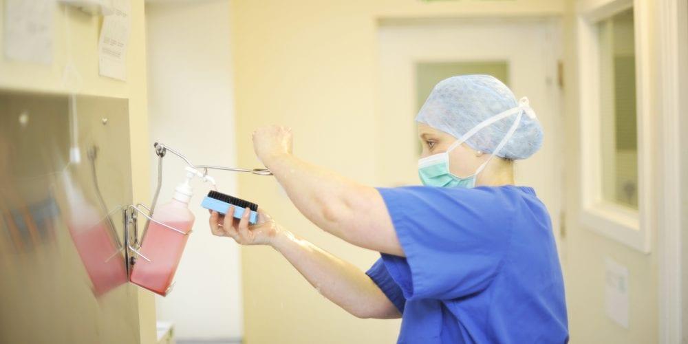 Vet preparing for surgery