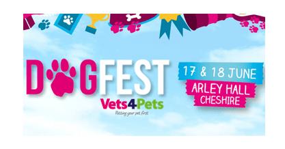 Dog Fest header