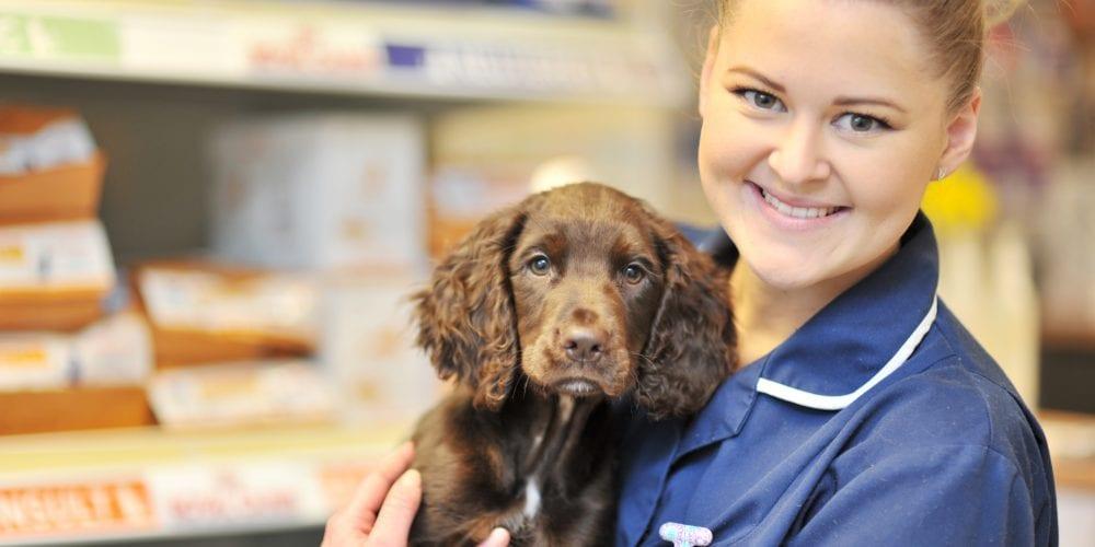 Trainee nurse holding a dog