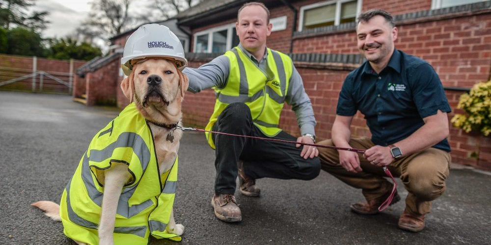 Vet, Builder and a dog in hi viz and safety helmet