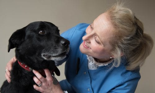 Veterinary Surgeon Katy Green with Henry a collie/labrador cross