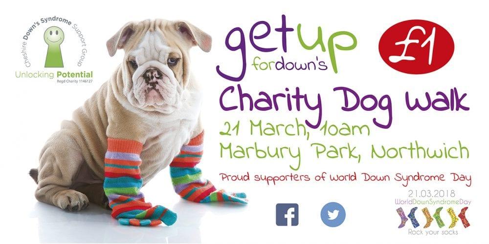 Charity dog walk poster