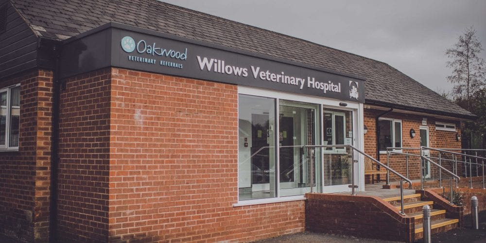 Willows Veterinary Hospital in Hartford